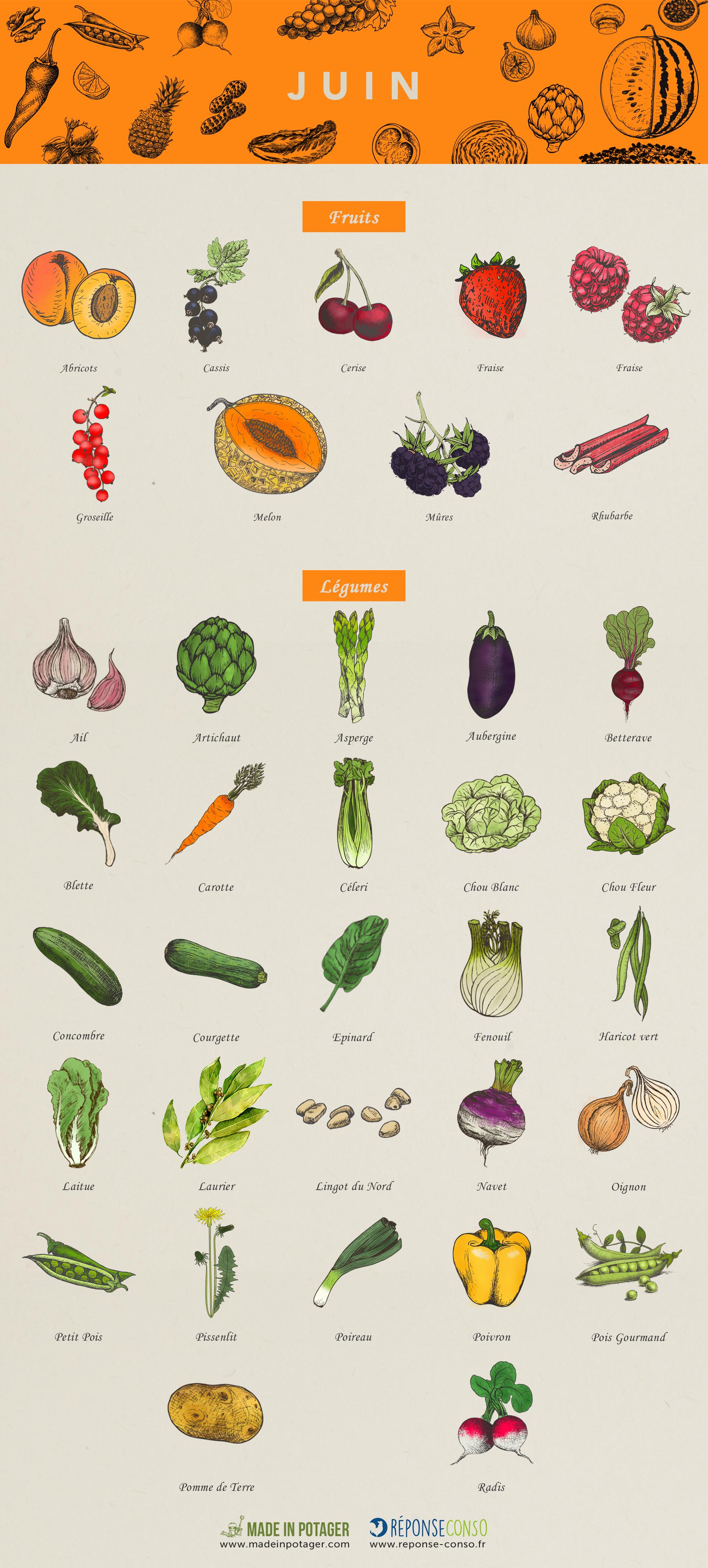 Calendrier Fruits Legumes.Calendrier Fruits Legumes Juin Ok Reponse Conso
