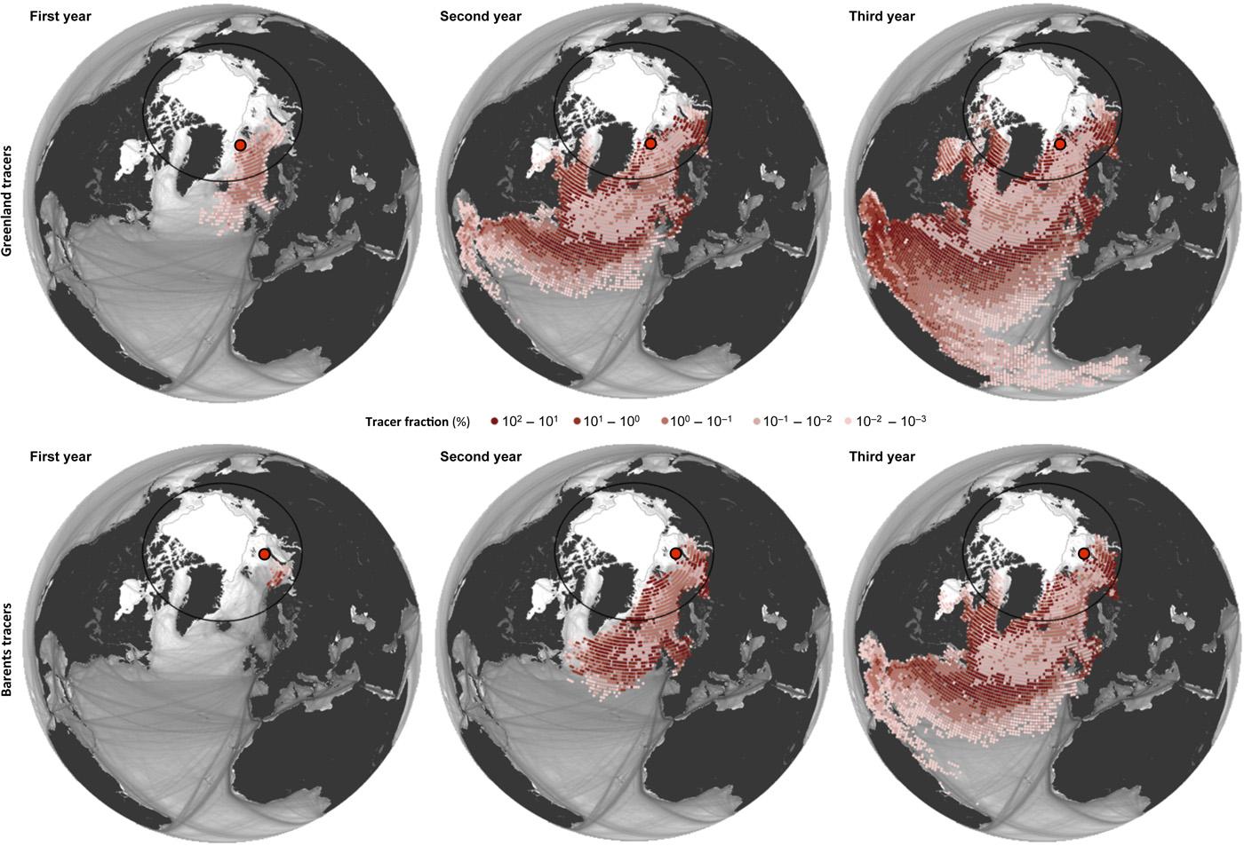 parcours Oceanic des accumulations de matière plastique dans la mer du Groenland (Les cartes supérieures) et la mer de Barents (Les cartes inférieures) obtenues par des simulations en arrière dans le temps.