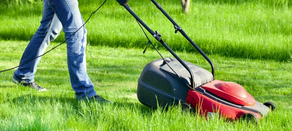 jardin quand peut on tondre sa pelouse reponse conso - Tondeuse Jardin