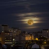 Photo : SIPANY/SIPA