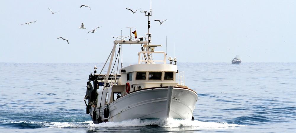 Une loi contre l'alcoolemie en mer