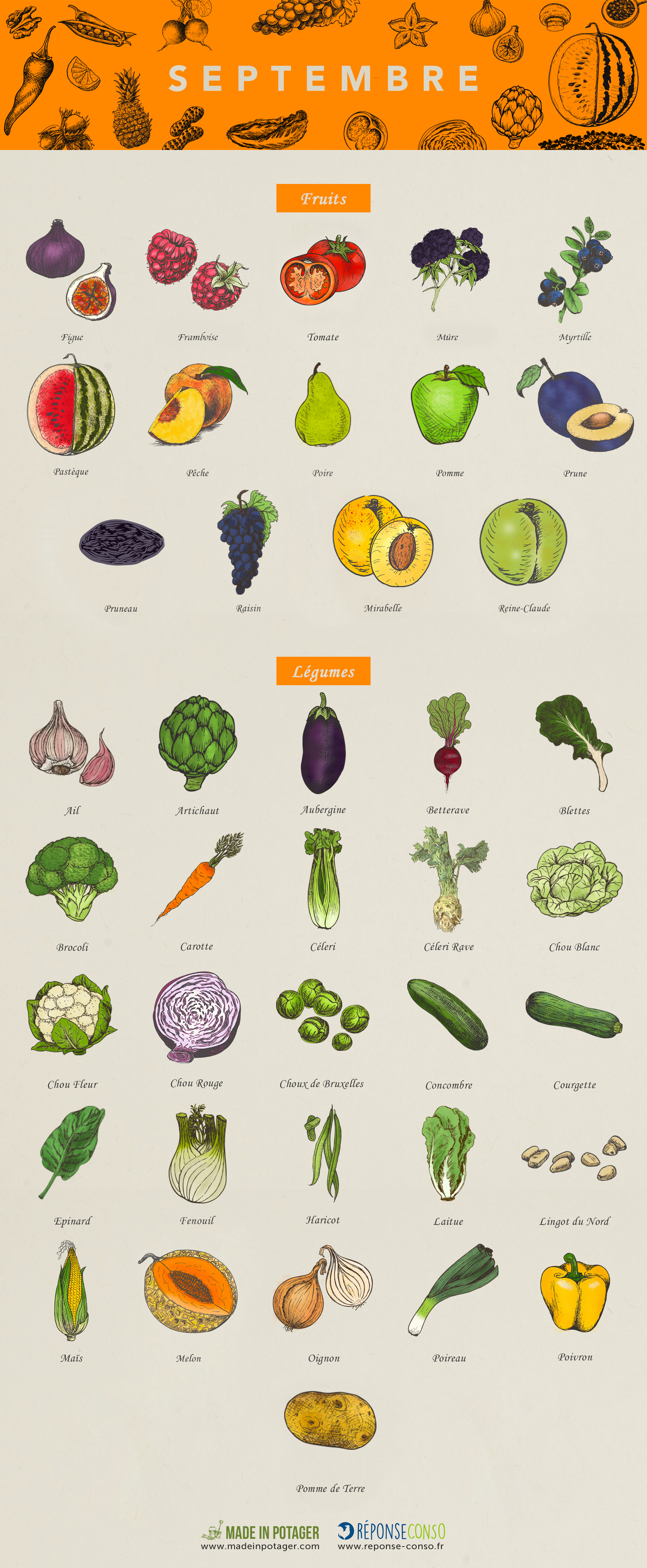 Calendrier Fruits Legumes.Calendrier Fruits Legumes Septembre Modifok Reponse Conso