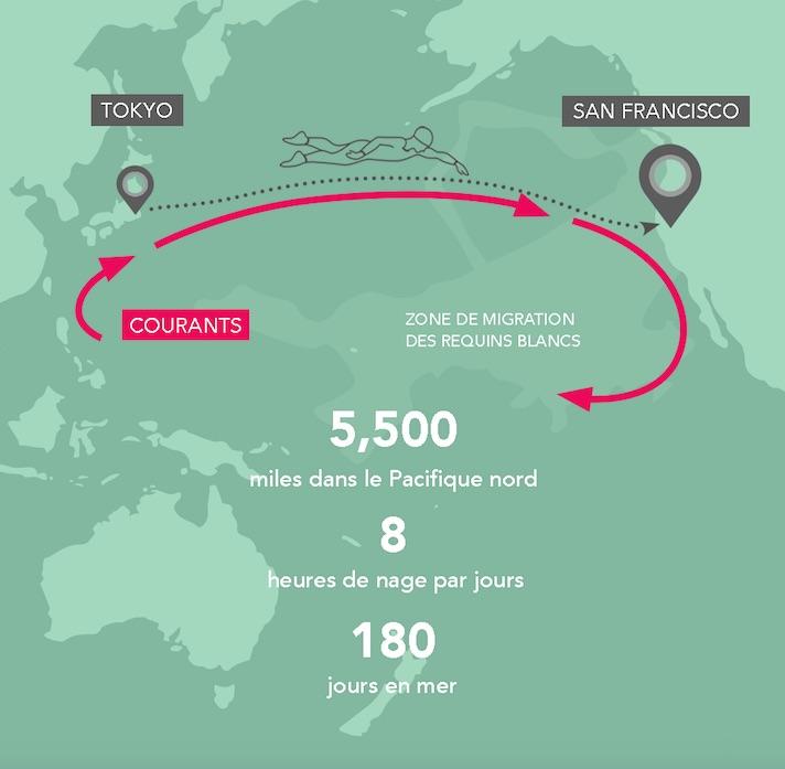 parcours-the-longest-swim
