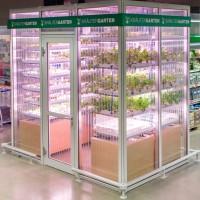 potager-supermarche-InFarm