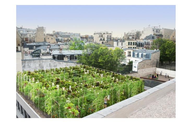Paris les toits et m me les parkings se v g talisent reponse conso - College du jardin des plantes ...