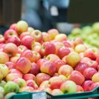 Supermarchés : où trouver des pommes avec le moins de pesticides ?