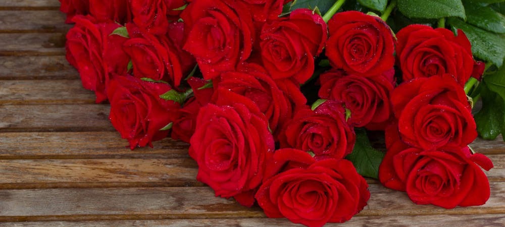 saint valentin quelles roses lui offrir reponse conso. Black Bedroom Furniture Sets. Home Design Ideas
