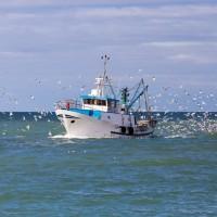 La pêche en eaux profondes interdite dès le 12 janvier
