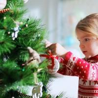 Pour Noël, louez votre sapin !