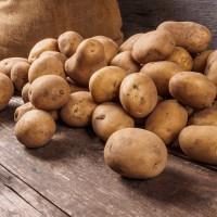 Cultiver des patates sur Mars ? Oui, c'est possible