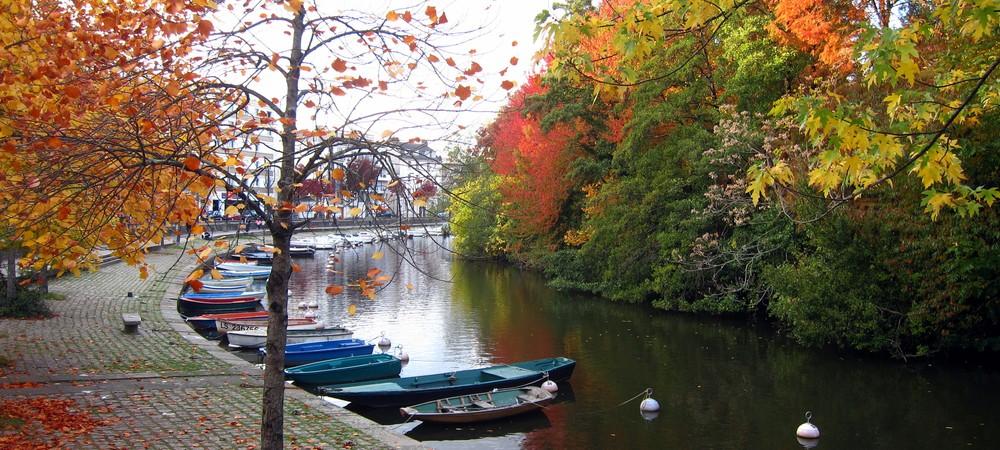 L'Ile de Versailles - Nantes