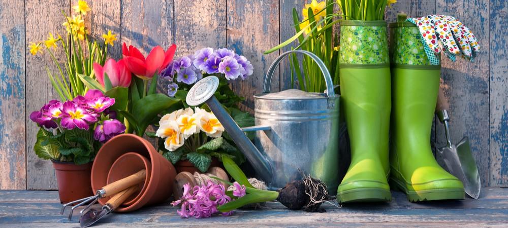 Le grand concours des jardiniers écolos !