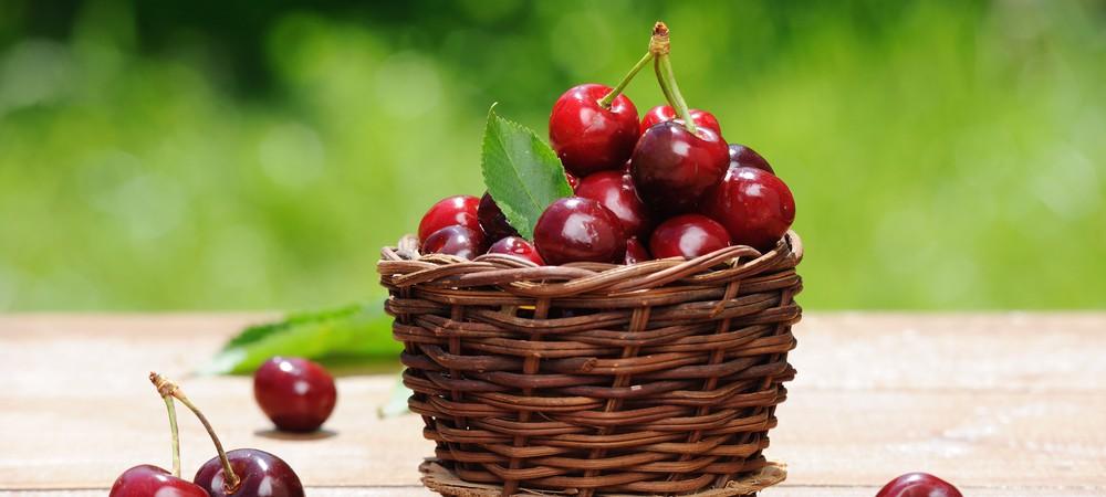 Les cerises traitées au diméthoate interdites en France