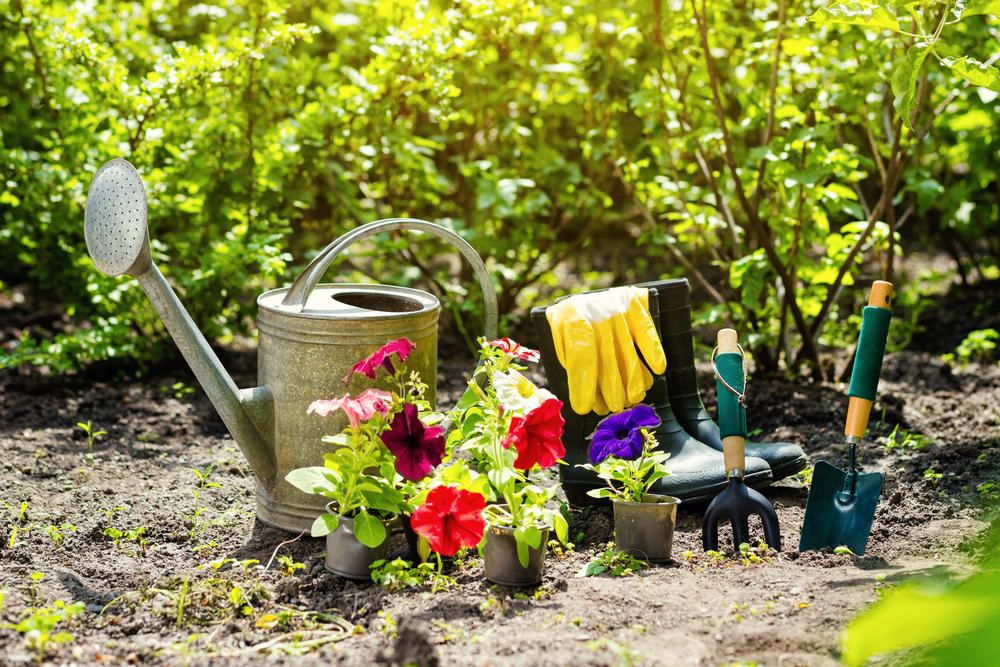 d sherbants naturels nos solutions pour avoir un beau jardin reponse conso. Black Bedroom Furniture Sets. Home Design Ideas