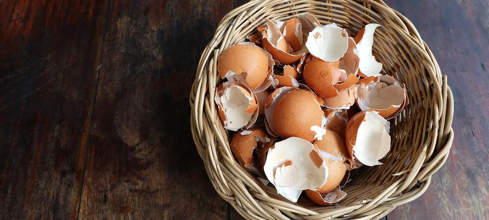 Les coquilles d'oeufs sont très utiles au quotidien, que ce soit au jardin ou à la maison.