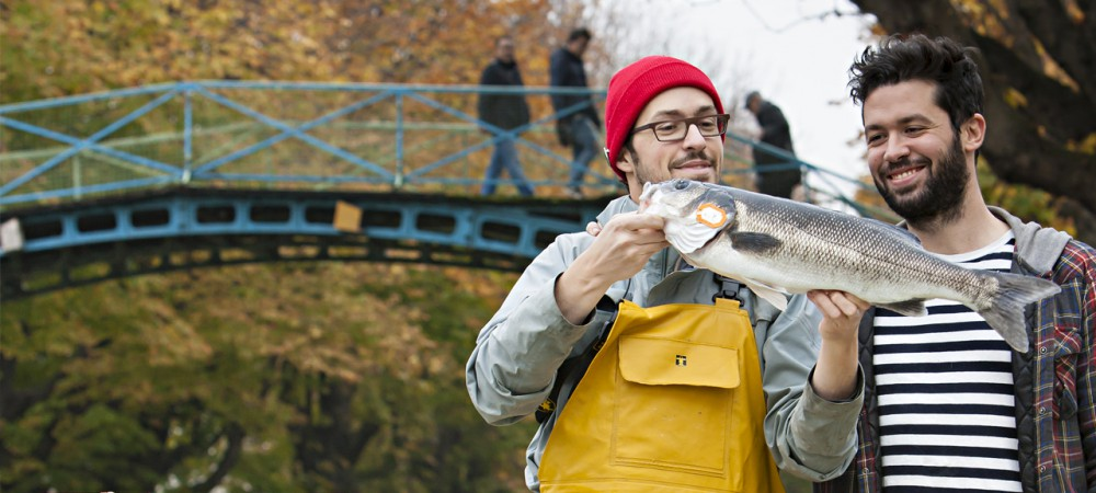 Poiscaille, un circuit court de vente de poisson frais