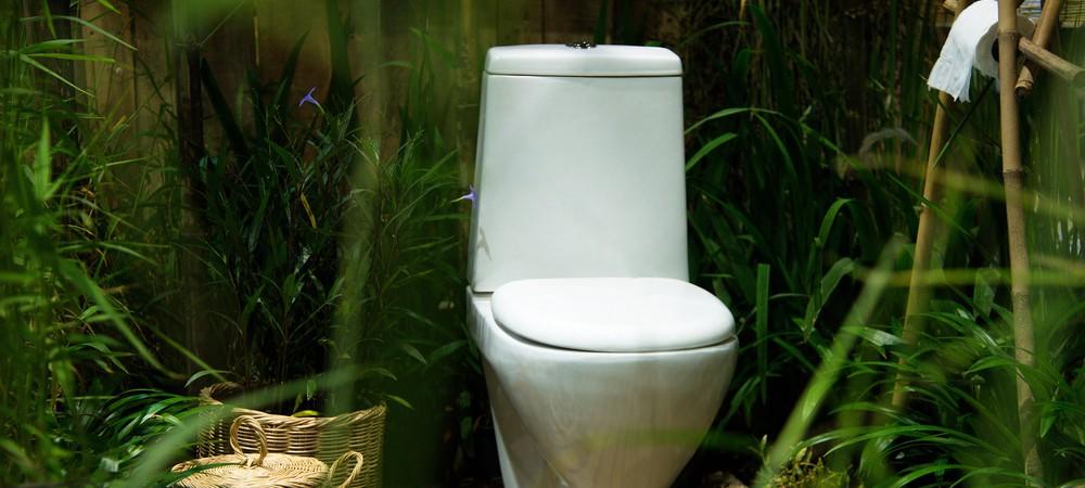 urine-jardin