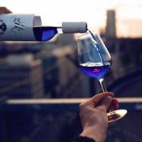 vin-bleu-Gïk-2